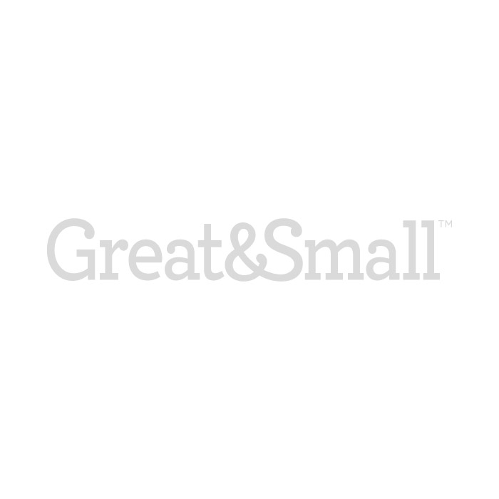 Great&Small Plastic Dog Bed Cream