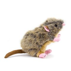 Great&Small Mouse Rat