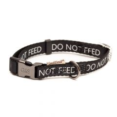 Great&Small Classic No Feed Collar Black