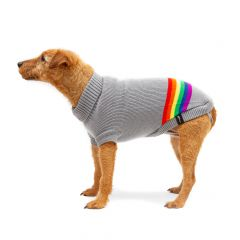 Penrose Knit Sweater with Rainbow Stripes