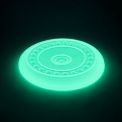 Great&Small 23cm Glow in the Dark Disc