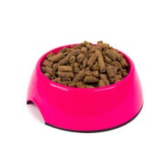 Great&Small Pink Melamine Dog Bowl