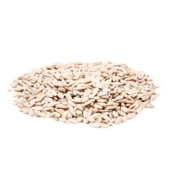 Great&Small Sunflower Hearts