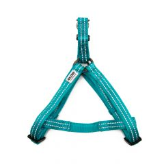Great&Small Glow Reflective Harness Turquoise